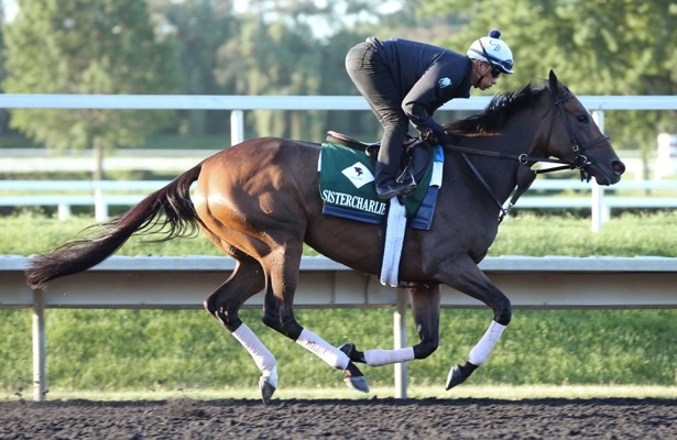 Weekend Watch: Turf stars in action at Arlington Park, Saratoga