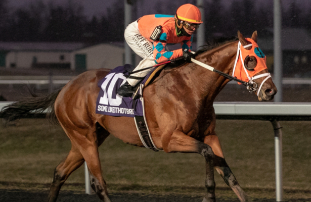 Kentucky Derby trail: Favorite Somelikeithotbrown wins Ruby