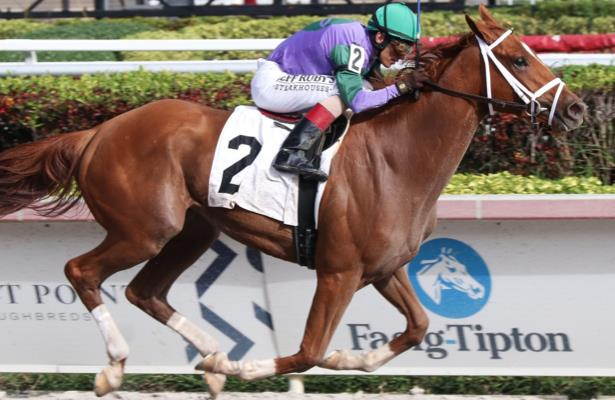 Weekend Plays: Spice Is Nice in the Gulfstream Park Oaks