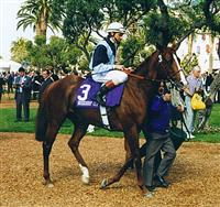 Spinning World takes the Breeders' Cup Mile
