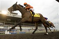 Strait of Dover wins 2012 Queen's Plate