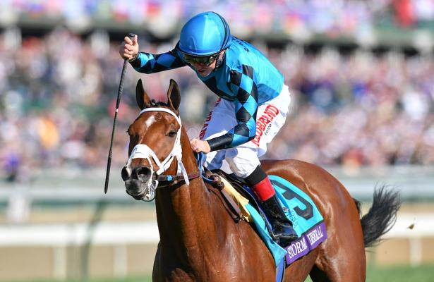 Stormy Liberal defends his title in Breeders' Cup Turf Sprint