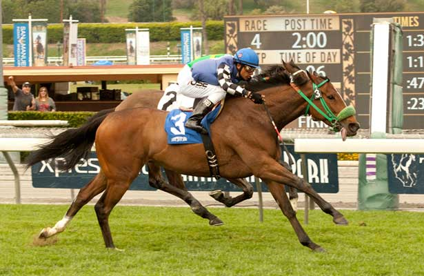 Stormy Lucy beats Miss Serendipity in 2014 Santa Barbara.