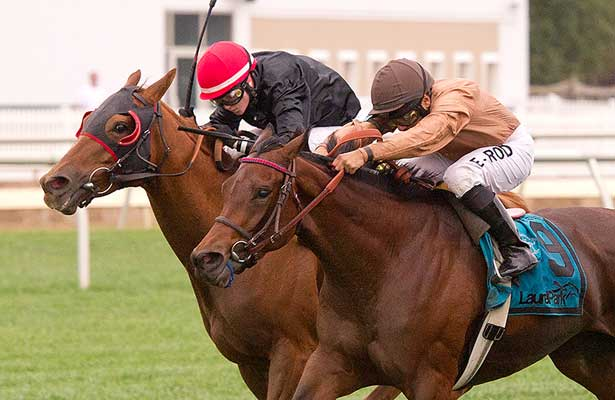 Strathnaver wins 2013 Lady Baltimore Stakes.
