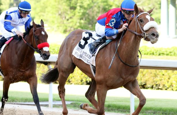 Filly Swiss Skydiver headlines 13 entered for Blue Grass