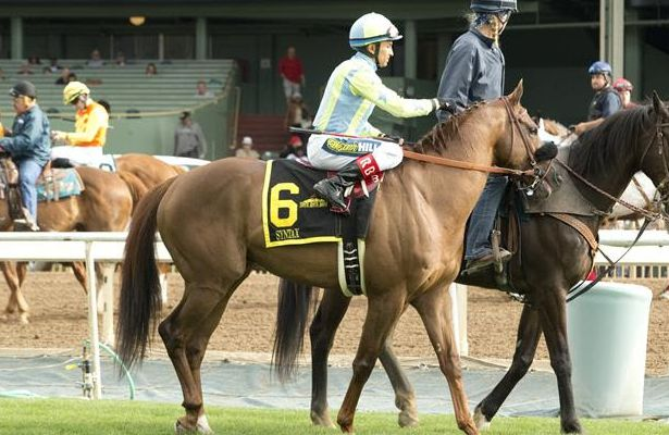 Syntax is post parade for San Luis Rey 2017