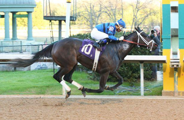Torrent slight favorite in Martha Washington