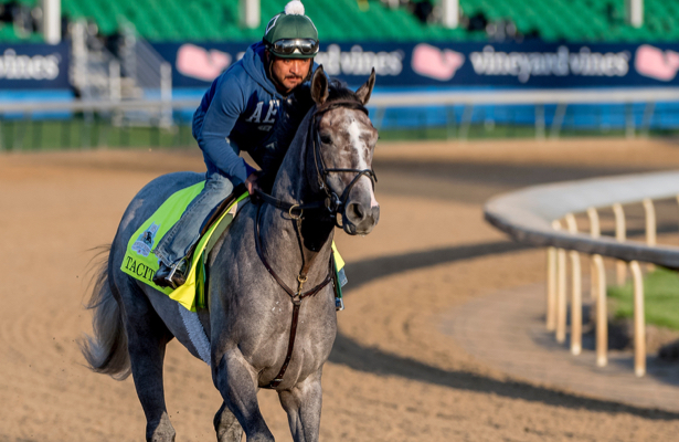 Who joins War of Will in the Belmont Stakes? Field shapes up