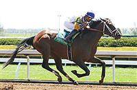 Tale of Verve wins at Keeneland (4-23-15)
