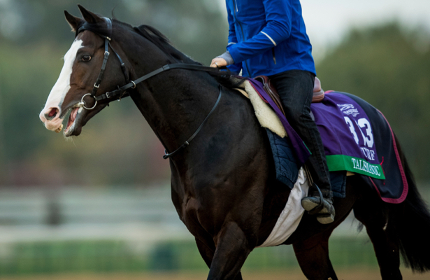 A Wonderful Horse Breeders Cup Champ Talismanic Retired