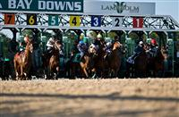 Tampa Bay Downs, Oldsmar, FL