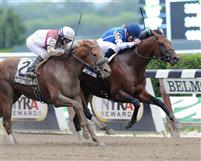 Teeth of the Dog wins 2012 Dwyer.