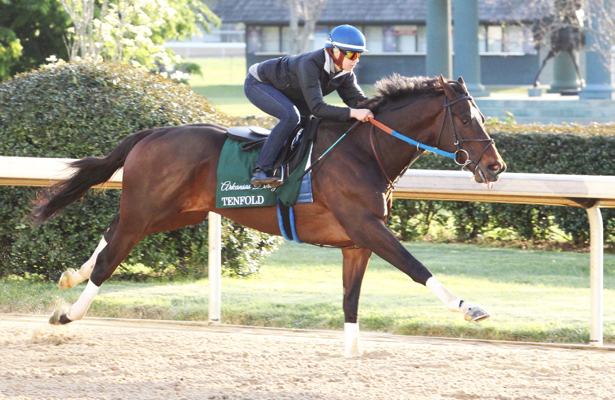Preakness 2018 news: Tenfold could be Belmont Stakes-bound, too