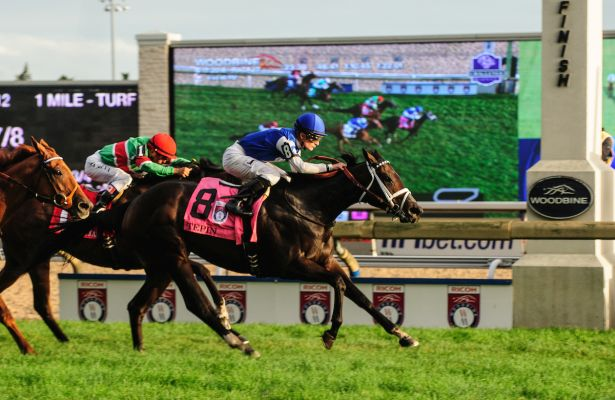 Tepin_Woodbine Mile 2016 2_615x400