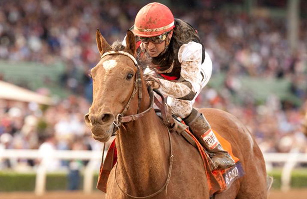 Texas Red wins 2014 Breeders' Cup Juvenile.