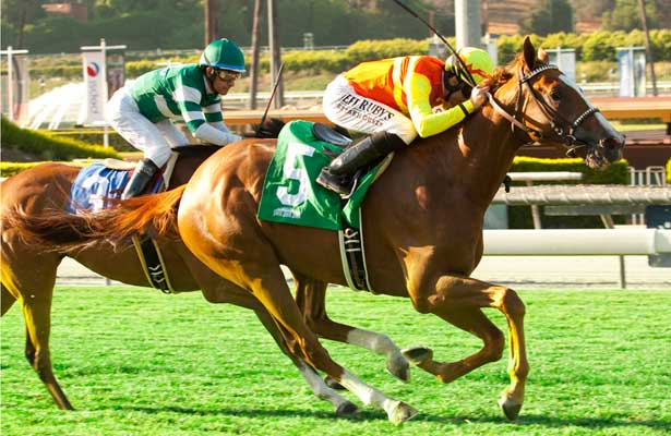 Texas Ryano beats Quotient at Santa Anita (6-13-14).