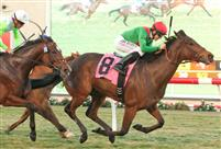 Three Hearts wins 2014 Red Carpet Handicap-G3