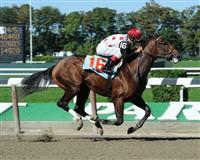 To Honor And Serve breaks maiden at Belmont Park (10-2-10).