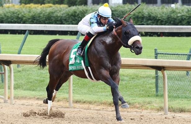 'Amazing' Tom's d'Etat likely to aim for Saratoga's Whitney