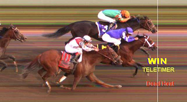 Photo finish of 2012 Travers dead heat between Alpha and Golden Ticket.