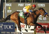 February 15, 2010.Tuscan Evening riden by Rafael Bejarano wins The Buena Vista Handicap at Santa Anita Park, Arcadia, CA
