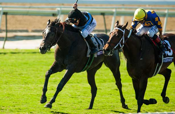 Nov. 03, 2012 - Arcadia, California, U.S - Mizdirection (KY) ridden by Mike Smith and trained by Mike Puype, wins theBreeders' Cup Turf Sprint (Grade I) at Santa Anita Park in Arcadia, CA.