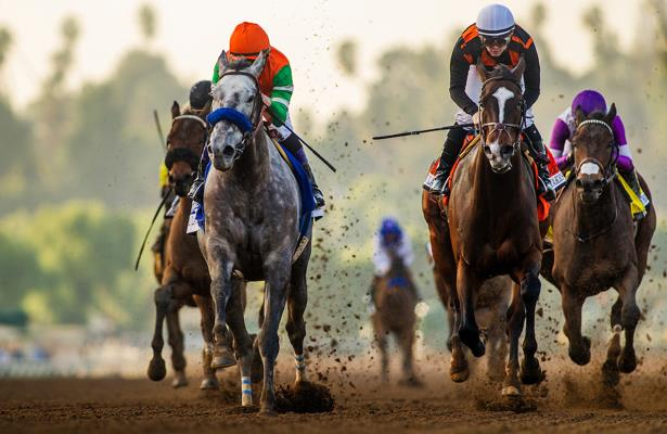 Unique Bella, Paradise Woods pointed to Santa Anita rematch