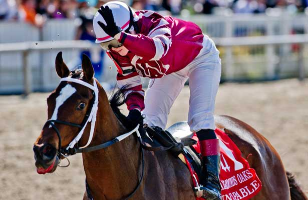 Kentucky Oaks 2014 Update - April 20
