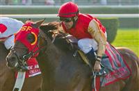 Up With the Birds, Cornelio Velasquez up, wins the Grade 1 Jamaica Handicap Stake at Belmont Park in Elmont, New York.