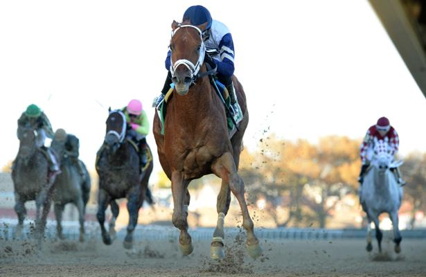 Vekoma's Met Mile bid highlights Hill's action-packed day at Belmont