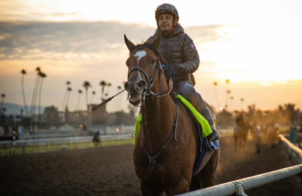 Jockeys' Guild seeks 'further dialogue' on Santa Anita changes