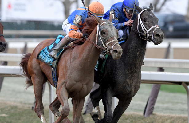 Aqueduct winter, spring meets topped by 2019 Derby preps