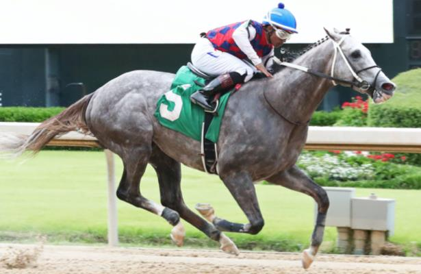 First look: Volatile stars in Churchill Downs' weekend stakes