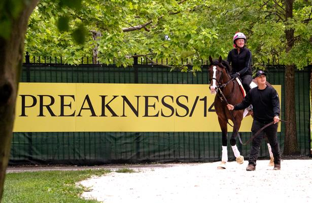 Trainer bonus of $100,000 up for grabs Preakness weekend