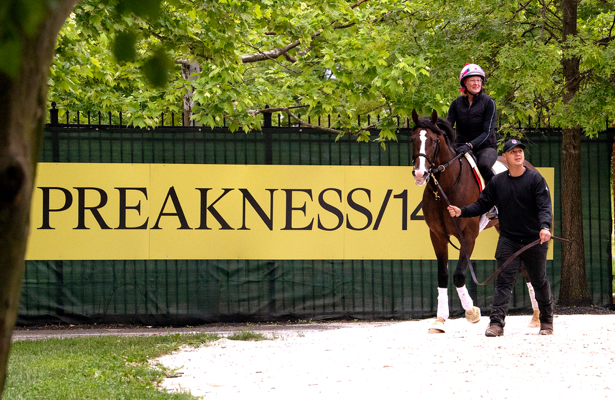 Updated: Free 2019 Preakness Stakes past performances