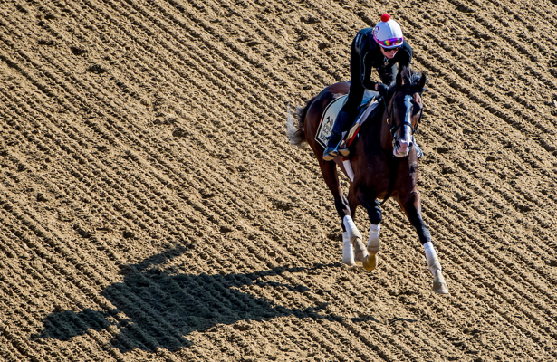 Casse expects War of Will to be 'extremely tough' in Preakness Stakes