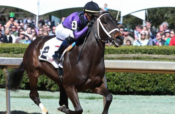 Warrior's Charge's camp weighs the Stephen Foster, Met Mile next