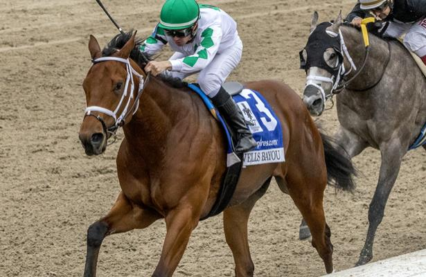 Wells Bayou's camp awaits a Preakness Stakes decision