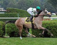Winter Memories breaks maiden at Saratoga (9-3-10).