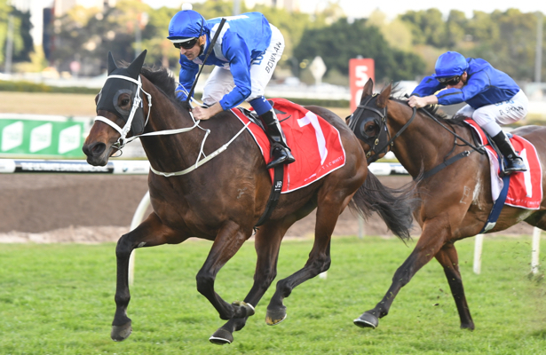Winx wins 26th straight in race named for the great horse