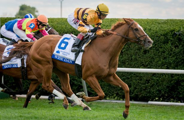 Wise Dan 2014 Shadwell 615 X 400 Heidi