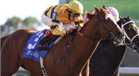 Wise Dan takes the 2010 Phoenix