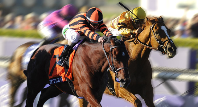 Wise Dan vs Little Mike