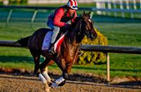 Wonder Gadot proves Breeders' Cup-worthy in Friday work