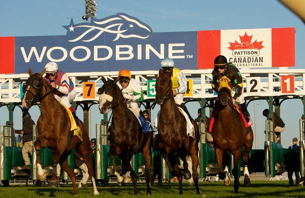 Woodbine Thoroughbred Racing 2010.