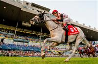 World Approval gets an easy win in the Woodbine Mile