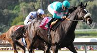 Zenyatta captures the 2010 Santa Margarita for a perfect 15 for 15