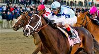 Verrazano, ridden by John Velazquez, wins the Wood Memorial Stakes on Wood Memorial Day at Aqueduct Race Track in Ozone Park, New York on April 6, 2013