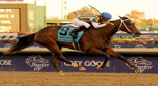 2012 Breeders' Cup Juvenile Fillies From A to Z
