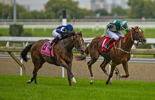Abscond gets the bob in Woodbine's Natalma Stakes thriller